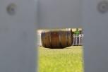 Wine barrel rolling fun at Stellenbosch Wine Festival, South Africa.