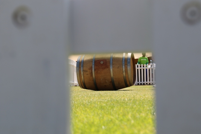 Wine barrel rolling fun at Stellenbosch Wine Festival, South Africa.