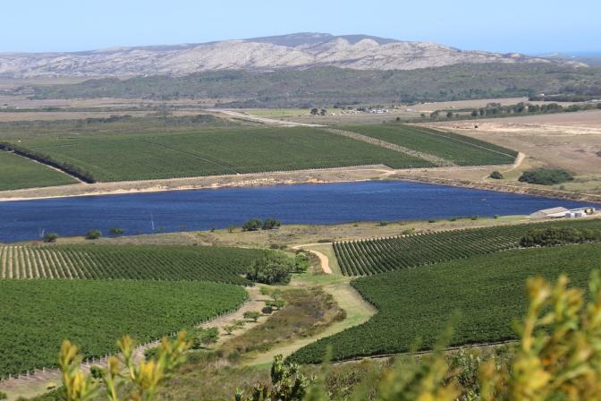 Lomond Wine Estate in Cape Agulhas South Africa.
