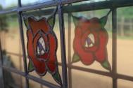 Window flower at Stella Bella in Margaret River Western Australia.