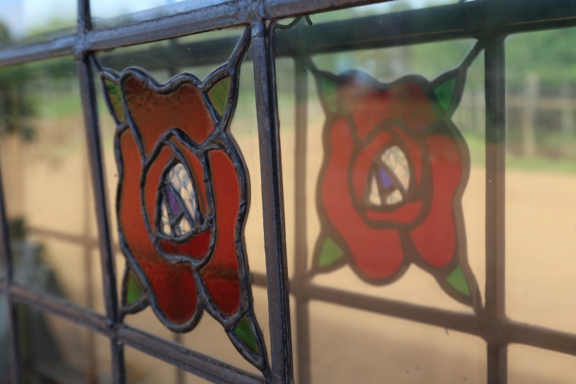 Window flower at Stella Bella in Margaret River Western Australia.