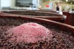 Fermenting Shiraz at Danshi Rise winery in McLaren Vale Australia.
