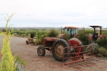 Tractors await some action at Danshi Rise Wines in McLaren Vale Australia.