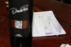 Noting the sugar levels at Danshi Rise winery in Mclaren Vale Australia.