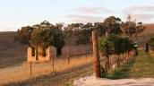Building ruins at Grosset Gaia vineyard.