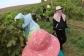 Workers harvesting at Grosset Gaia vineyard.