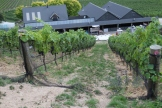 Felton Road winery from the overlooking hill in Bannockburn New Zealand.