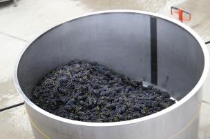 Pinot Noir in the tank at the Felton Road winery in Bannockburn New Zealand.