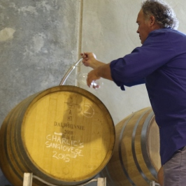 David Jones in the Dalwhinnie wine cellar Australia tasting his sons Sangiovese.