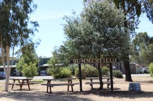 Summerfield Wines.