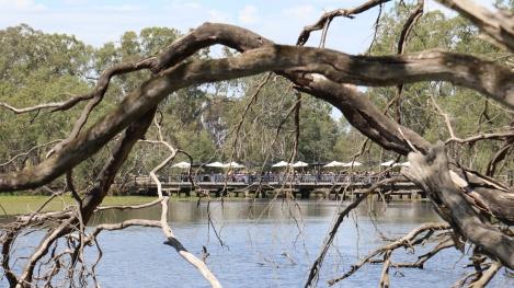 Lunch on the bridge at Tahbilk Winery Estate in Australia.