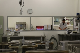Campbell Meeks working in the laboratory of Charles Sturt University in Australia.