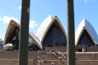 Sydney Opera House through some railings.