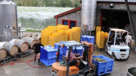 Staff busy at work in the Neudorf winery in New Zealand.
