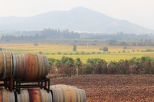 A view of barrels and the vineyards at Kingston Family in Chile.