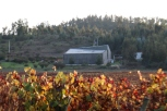 A view from the vineyard of the Kingston Family winery in the Casablanca Valley in Chile.