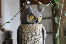 An owl overlooks the Hoops wine garden vines in Maipo Valley in Chile. From the around the world in 80 wines project.