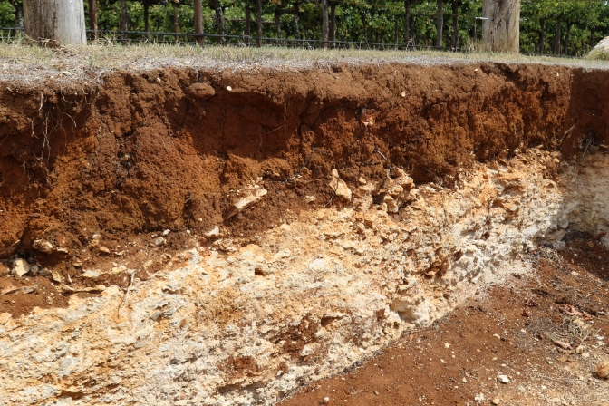 Terra Rossa soils at Wynns Coonawarra Estate in Australia..