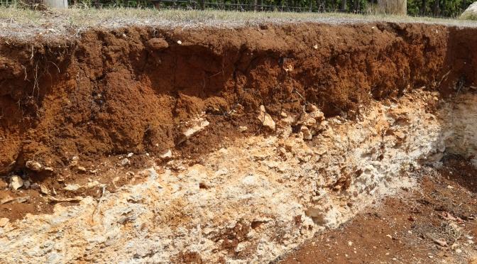 Terra Rossa soils at Wynns Coonawarra Estate in Australia..