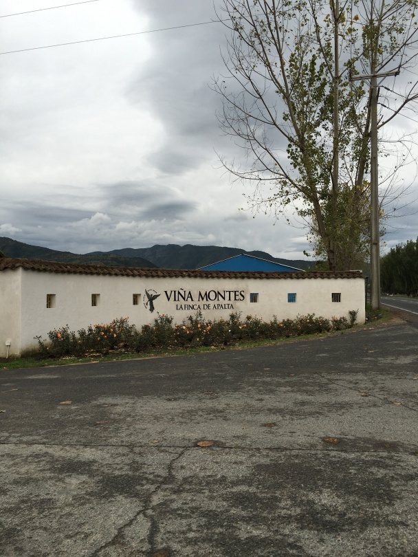 Entrance to Montes Wines in Apalta, Chile.