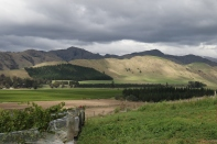 View from the Churton vineyard in Marlborough.
